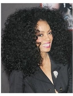 Diana Ross at the Ladder 49 Premiere