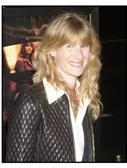 "Laura Dern at the ""In the Cut"" premiere"