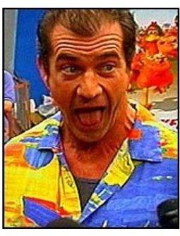 Chicken Run premiere video still: Mel Gibson