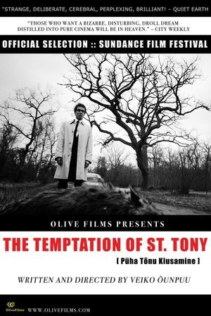 Temptation of St. Tony