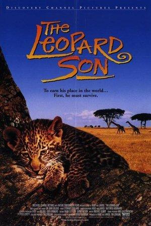 Leopard Son