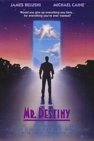 Mr. Destiny