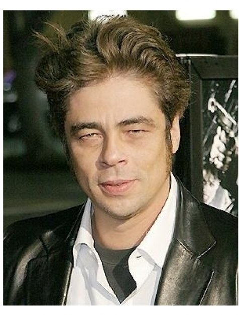 Sin City Premiere: Benicio Del Toro